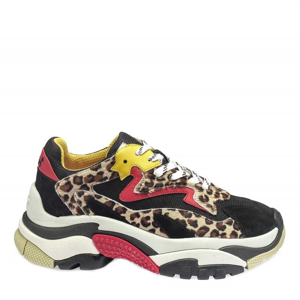 2e9057edd59e Ash ADDICT Sneakers Cheetah Print Pony Hair   Black Mesh