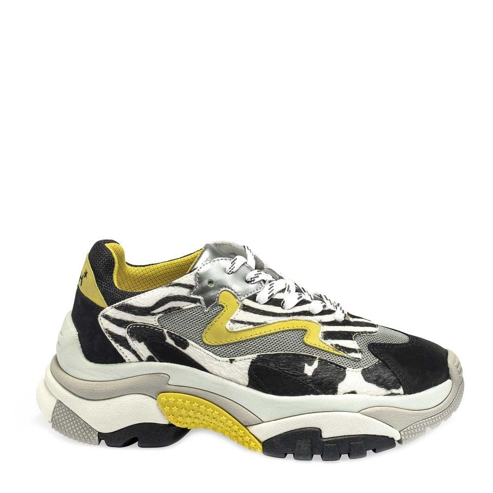 e06dee2b7a81 Ash ADDICT Sneakers Zebra Print Pony Hair   Grey Mesh