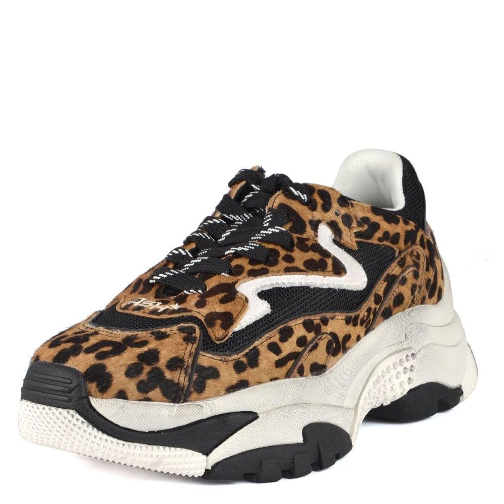 Addict Ter | Women's Leopard Print