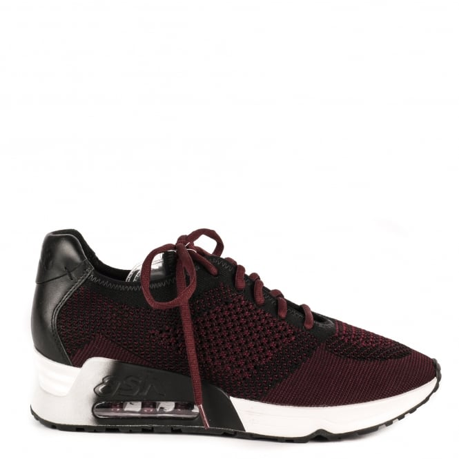 Ash LUCKY Trainers Black & Dark Red Knit